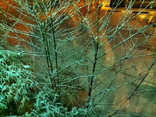 C360_2012-01-16_00-20-04