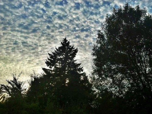 C360_2012-09-27-18-17-53