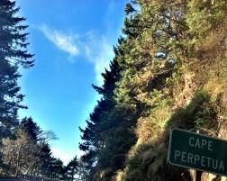 Most cherished landscape, Highway 101